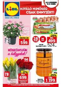 Lidl akciós újság 2019. 03.07-03.13